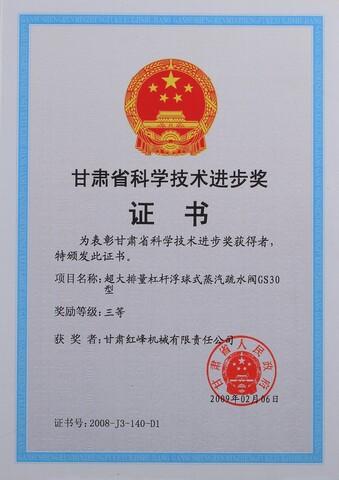 2009年甘肃省科技进步三等奖(