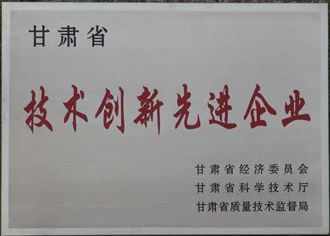 2013年甘肃省技术创新先进企业