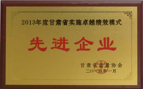 2013年度甘肃省实施卓越绩效模
